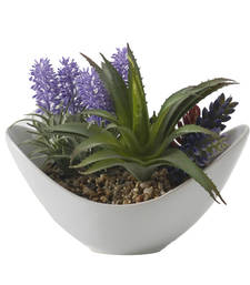 Buy Green  and  Purple Artificial Plant with Ceramic Pot pot online