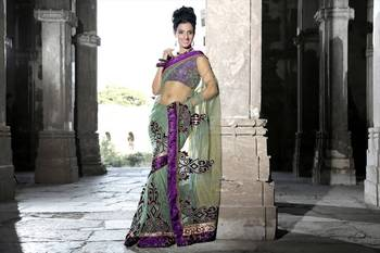 Pale green net saree with unstitched blouse (bwd919)