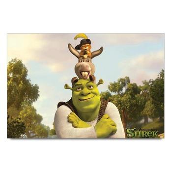 Shrek The Movie Poster