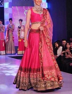 Pink with Embroidery jari work Genelia Dsouza Net lehenga