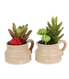 Buy Set of 2 Multicolor Artificial Plants with Kettle Style Pot flower online