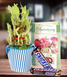 Buy Good Luck Bamboo Plant,Anniversary Card with Snickers Chocolate thanksgiving-gift online