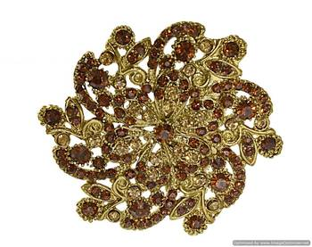Kshitij Gorgeous German Silver Brooch